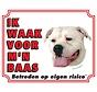 American Bulldog Wake board - Ich beobachte mein Chef