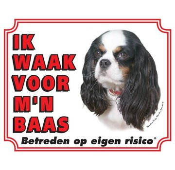 Stickerkoning Cavalier King Charles Spaniel Wake Board - Tricolor