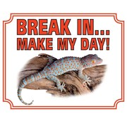 Stickerkoning Gekko Waakbord - Break in make my day