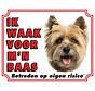 Cairn Terrier Wake board - Je regarde mon patron Blonde