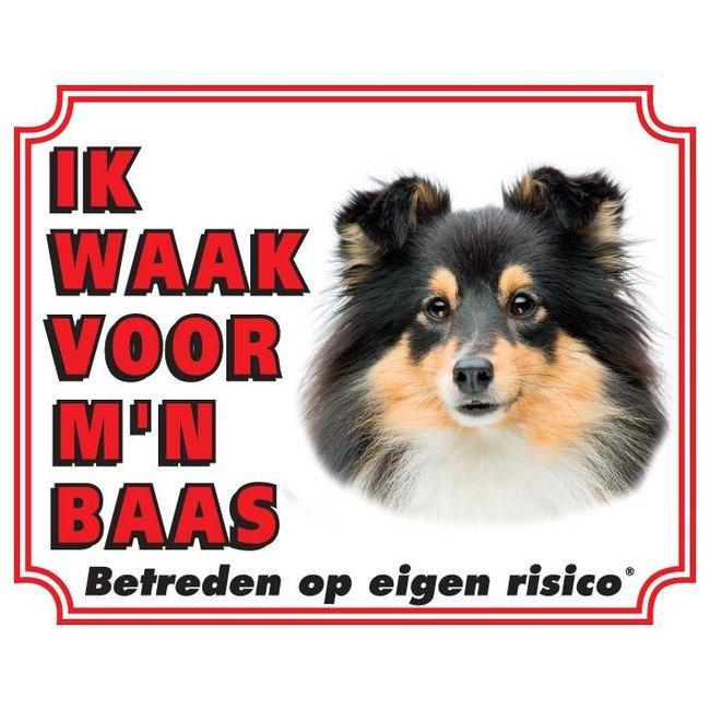 Stickerkoning Shetland Sheepdog Wake board - Ich beobachte für Schwarz