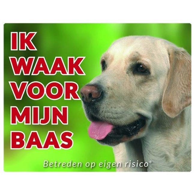 Stickerkoning Labrador Retriever Wake board - Ich beobachte für blond