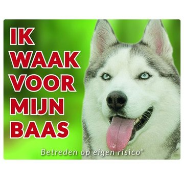 Stickerkoning Wake board Husky sibérien - Je regarde mon patron