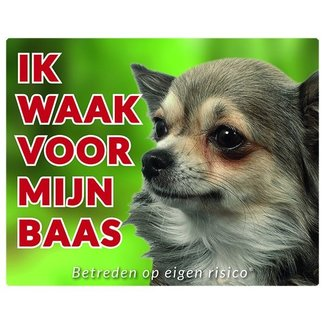 Stickerkoning Chihuahua Wake board - I watch my Long Hair