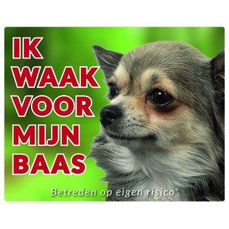 Stickerkoning Chihuahua Wake board - Ich beobachte meine langen Haare