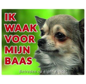 Stickerkoning Chihuahua Wake board - Je regarde mes cheveux longs