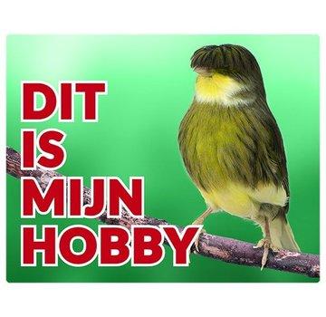 Stickerkoning Gloster Conseil Canary Wake