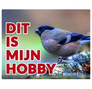 Stickerkoning Bullfinch Watch Bord Pop - This is my hobby