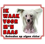 Stickerkoning Chinese Crested Wake board - I watch for