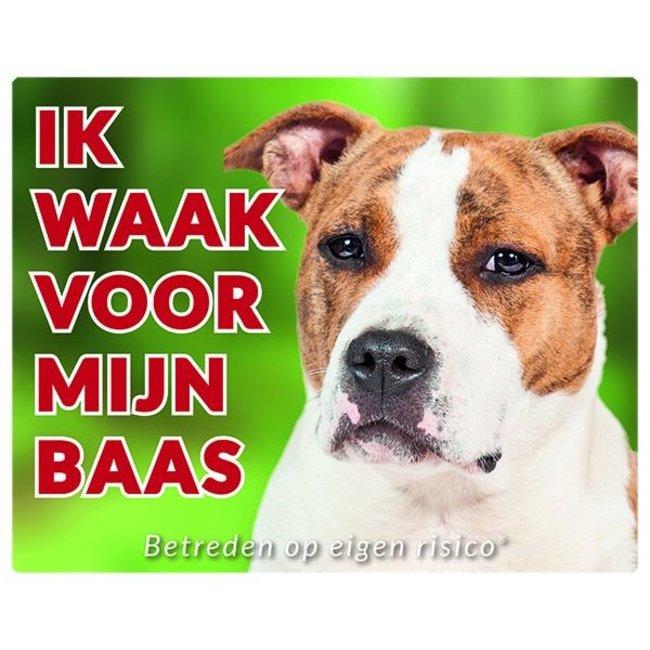 American Staffordshire Terrier Wake board - ich Uhr