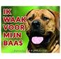 Boerboel Wake board - Je regarde mon patron