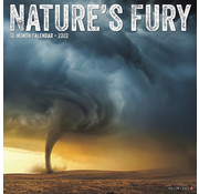 Willow Creek Nature's Fury Calendar 2020