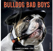 Willow Creek Bulldog Bad Boys 2020 Mini Calendar