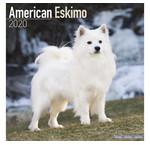 American Eskimo Kalenders