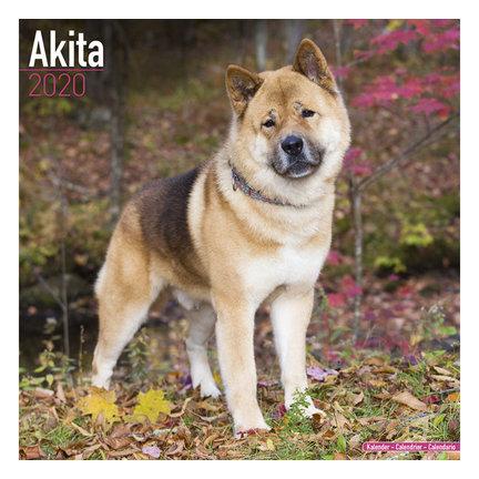 Akita Kalenders 2020