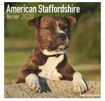 Amerikaanse Staffordshire Terrier Kalenders