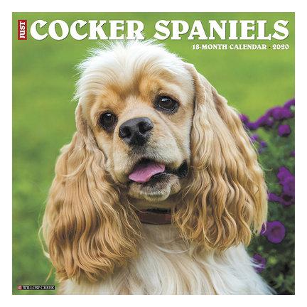 American Cocker Spaniel Calendars 2021