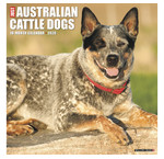 Australian Cattle Dog-Kalender
