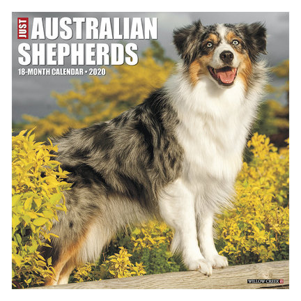 Australian Shepherd Calendars 2021