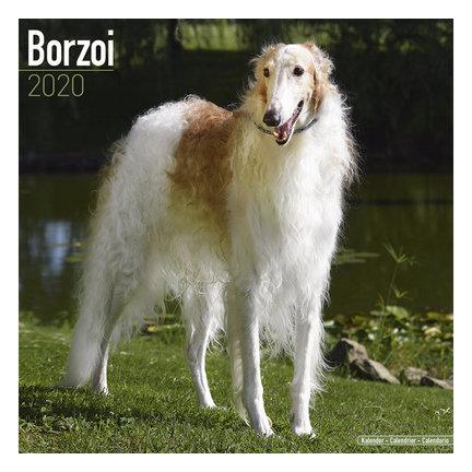 Barsoi Kalenders 2020