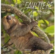 Korsch Verlag Sloth Calendar 2020
