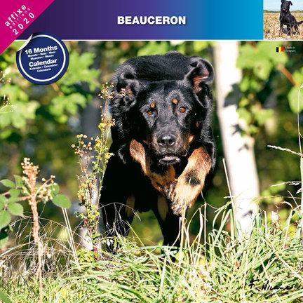 Beauceron Calendars
