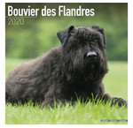 Calendriers Bouvier