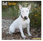 Bull Terrier Kalenders