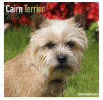 Cairn Terrier Calendriers