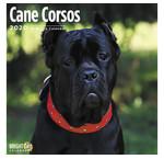 Calendriers Cane Corso