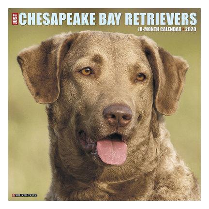 Chesapeake Bay Calendriers Retriever