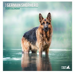 Deutsch Shepherd Kalender