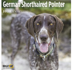 German Shorthaired Pointer Calendars