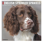English Springer Spaniel Calendriers