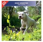 Argentijnse Dog Kalenders