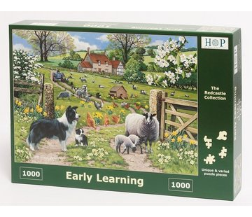 The House of Puzzles Early Learning Puzzel 1000 stukjes