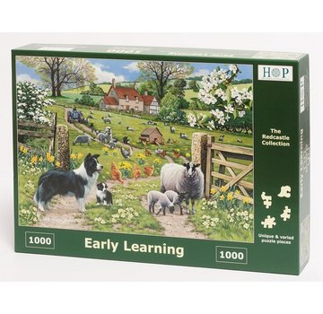 The House of Puzzles Early Learning Puzzle 1000 Stück