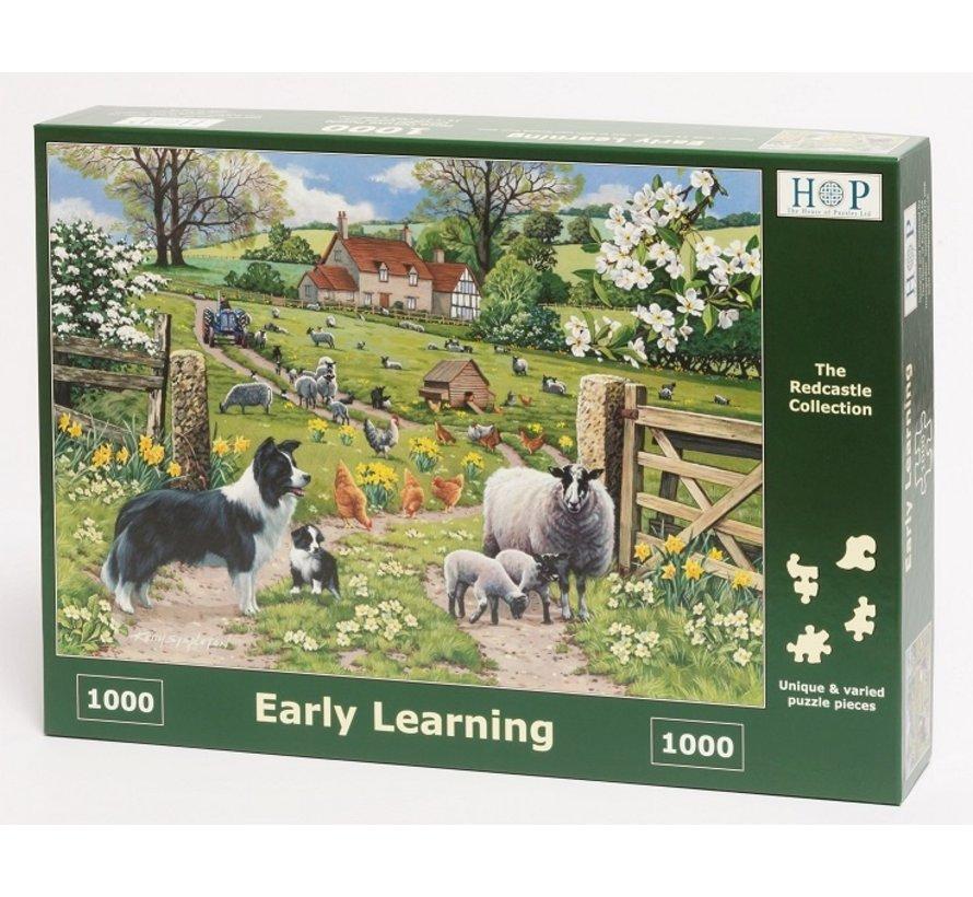 Early Learning Puzzel 1000 stukjes