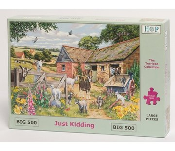 The House of Puzzles Just Kidding Puzzel 500 XL stukjes