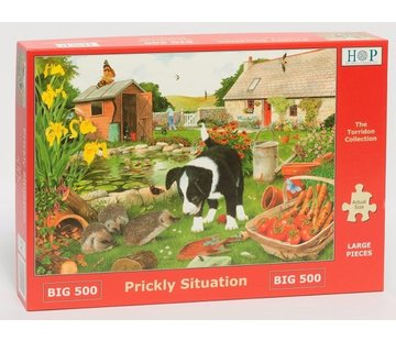 The House of Puzzles Prickly Situation Puzzle 500 pieces