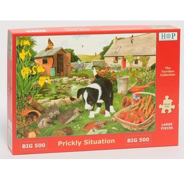 The House of Puzzles Prickly Situation Puzzle 500 pieces XL