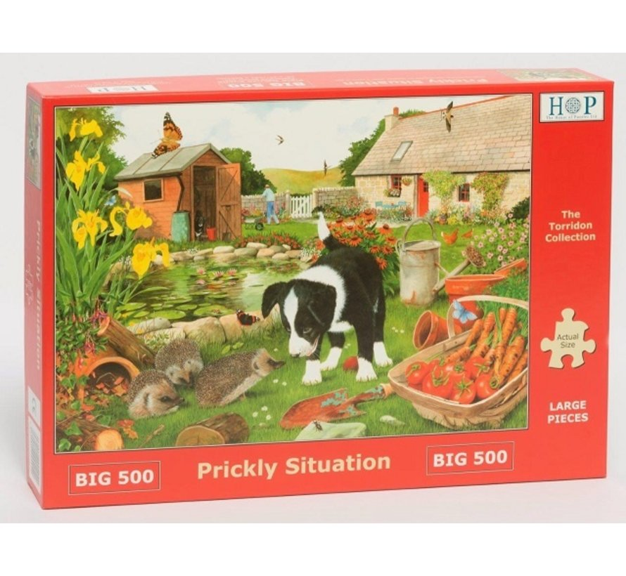Prickly Situation Puzzle 500 pieces