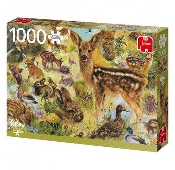 Jumbo Puzzle Rien Poortvliet Wilde 1000 Stück