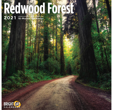 BrightDay Redwood Forest Kalender 2021
