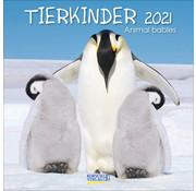 Korsch Verlag Animaux Bébés Calendrier 2021