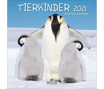 Korsch Verlag Baby Dieren Kalender 2021