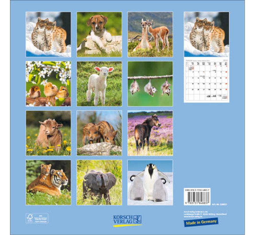 Baby Dieren Kalender 2021