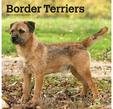 Browntrout Border Terrier Calendar 2021