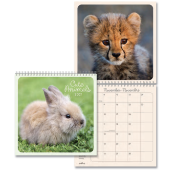 Hallmark Cute Animals Calendar 2021