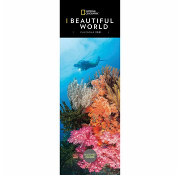 CarouselCalendars Beautiful World Calendar 2021 Slimline